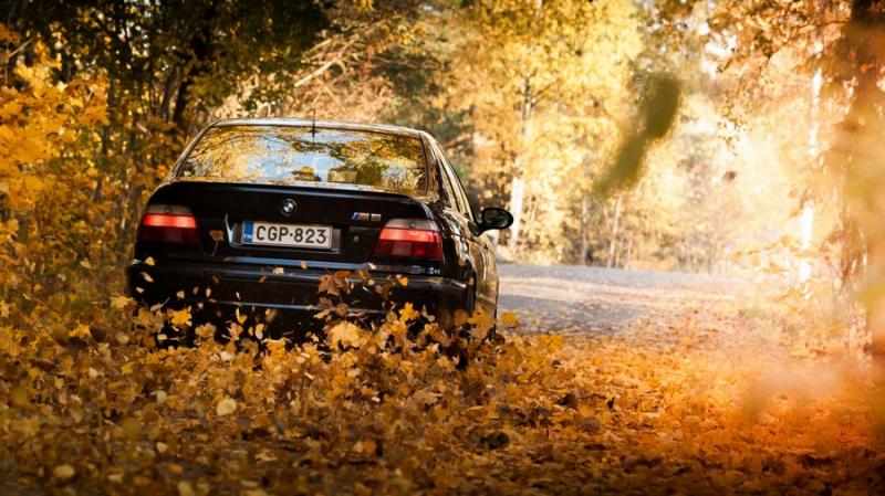 Коврик для авто на осенний сезон: какой выбрать?
