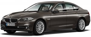BMW 5 (F10) 6-е поколение 2009-2017, коврик в багажник