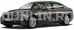 BMW 5 (F10) 2009 и новее, коврики в салон