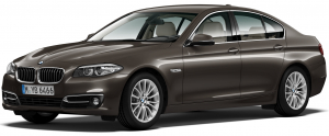 BMW 5 (F10) 4WD 6-е поколение 2009-2017, коврик в багажник