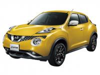 NissanJuke 1-е поколение 2010 - наст. время, коврики в салон